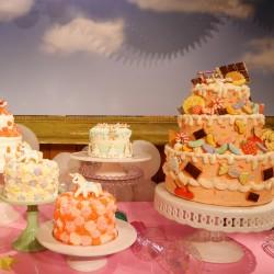 大人気パティシエ海老名めぐみさんのオーダーケーキのすべて【ハミングバーズヒル】