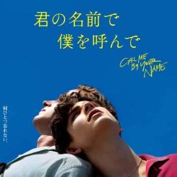 誰もが胸の中にある柔らかな場所を思い出す【映画:君の名前で僕を呼んで】公開中