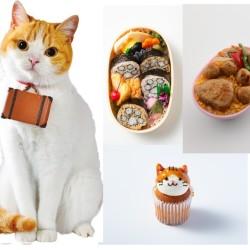 """猫派必見""""にゃらん""""コラボのお弁当&スイーツがかわいすぎ!"""