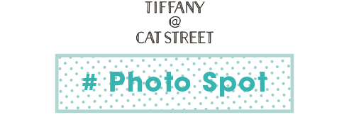 # Photo Spot