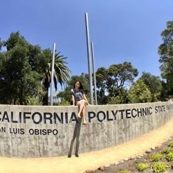 Hello, from California のド真ん中。。。?!|JJ海外スタッフブログ